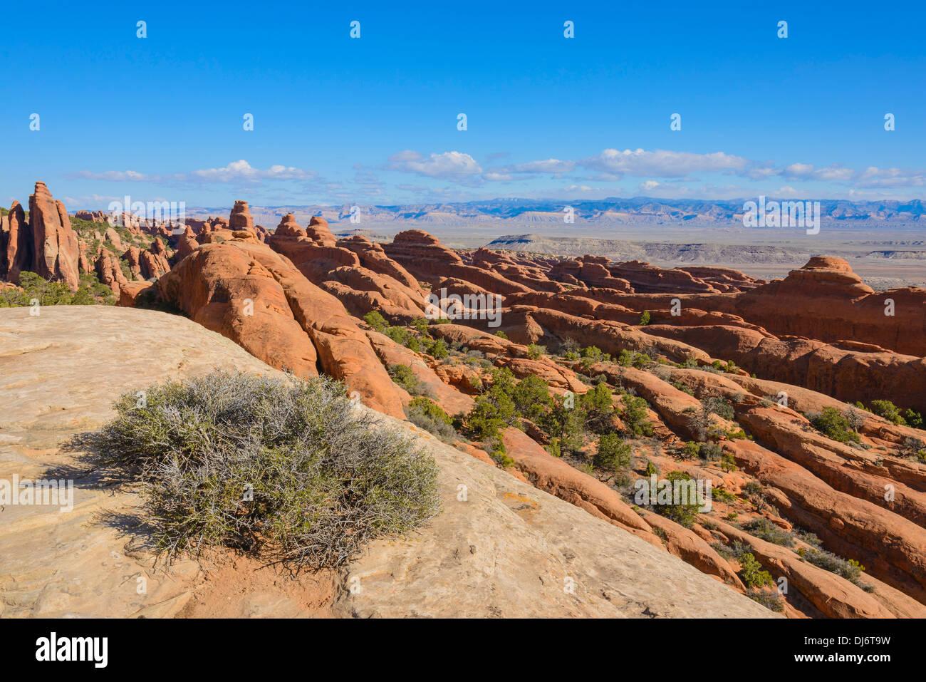 Fins, Rock formations, Devils Garden, Arches National Park, Utah, USA - Stock Image