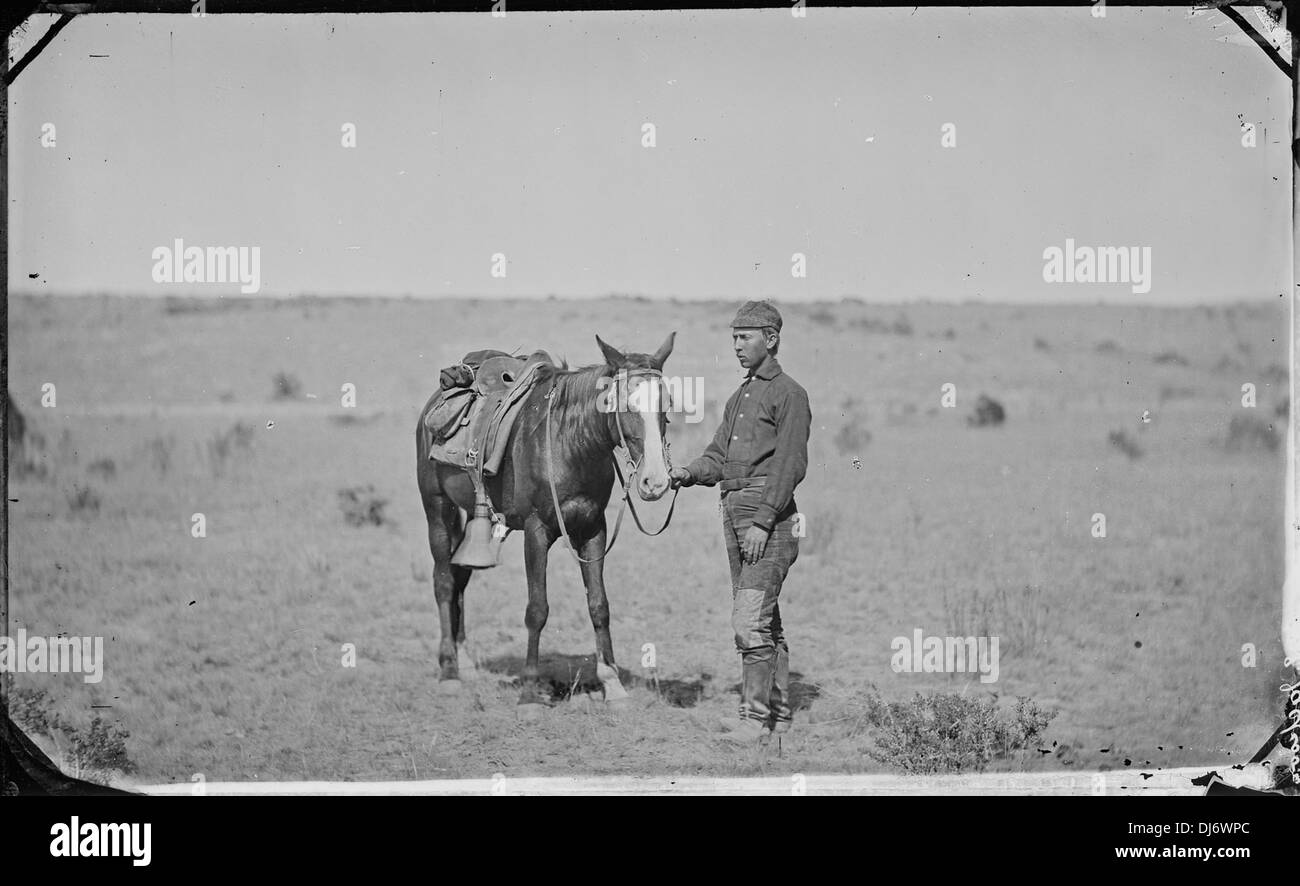Camp study. G.B. Dixon, photographic assistant 193 - Stock Image