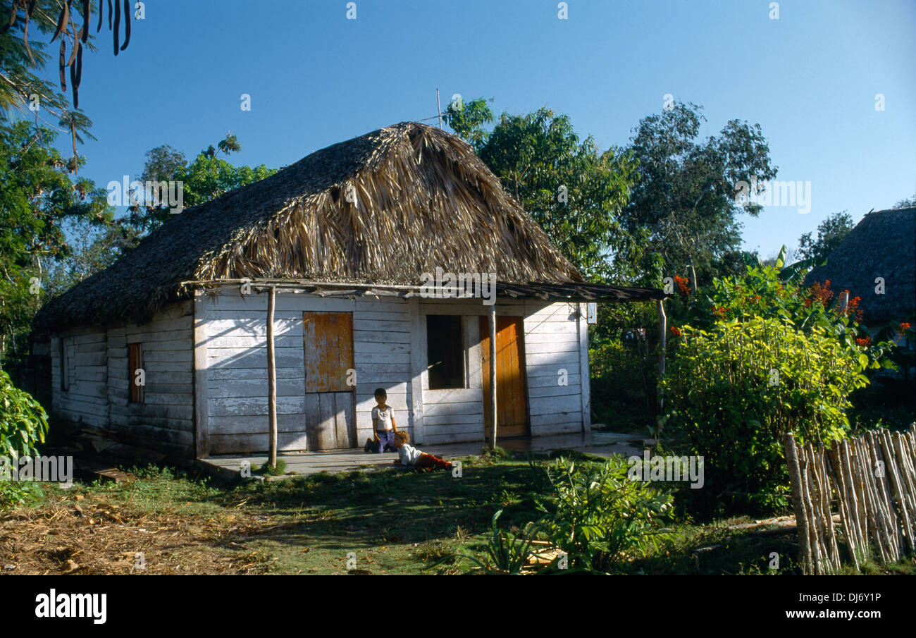 Cienfuegos Province Cuba Rural Home Thatched Roof - Stock Image