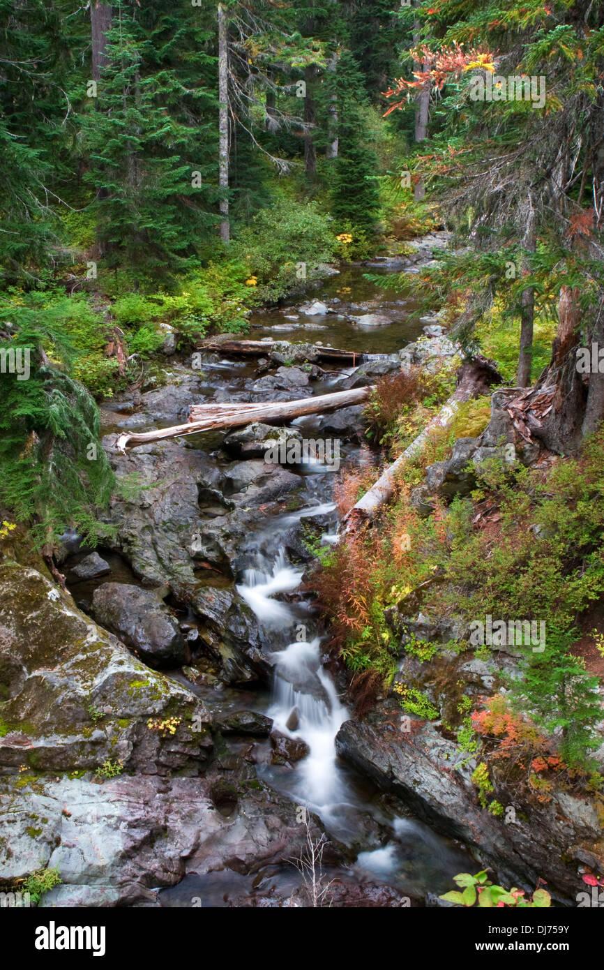 Box Canyon Creek in fall, Wenatchee National Forest, Washington. Stock Photo