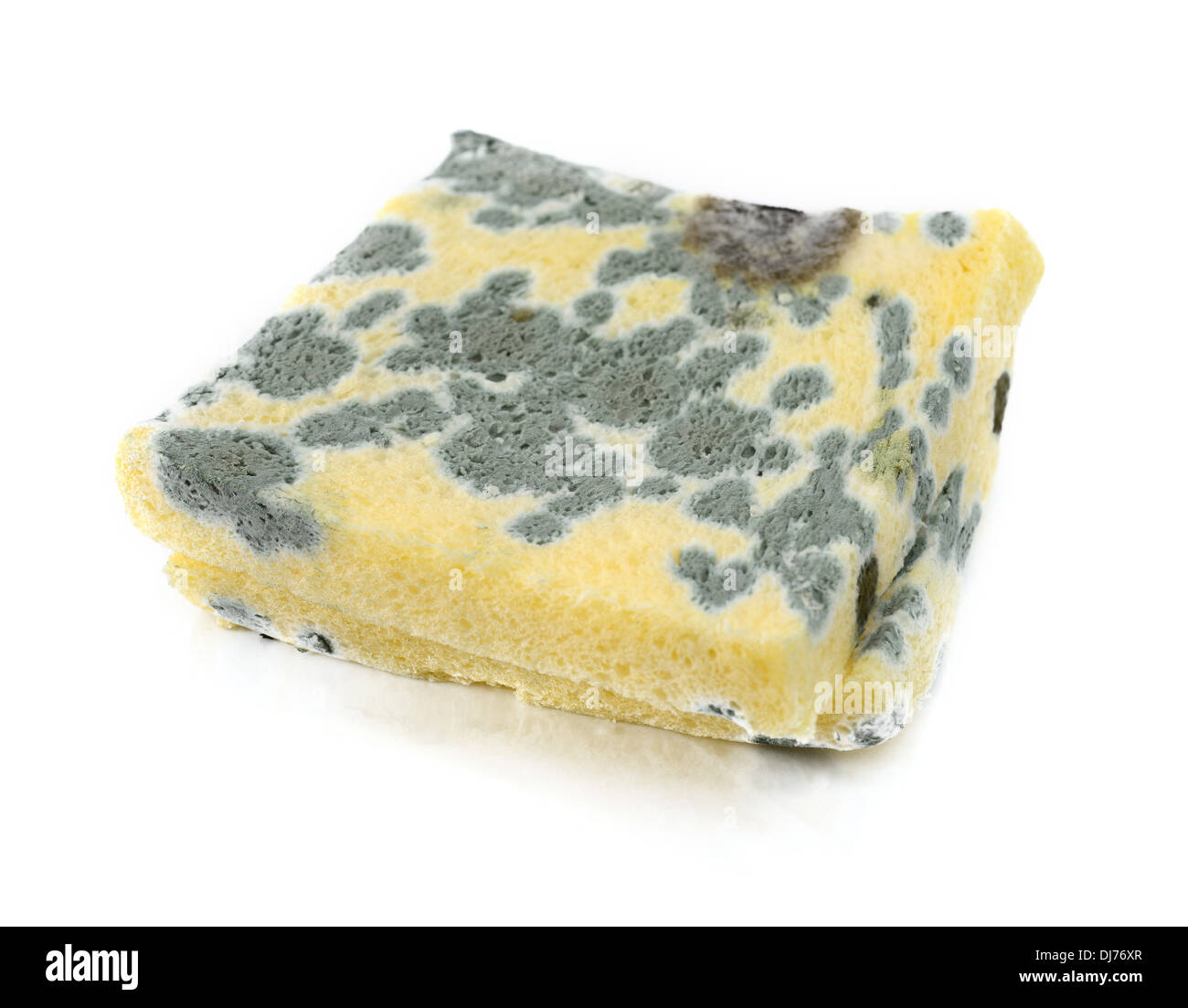 mold on bread - Stock Image