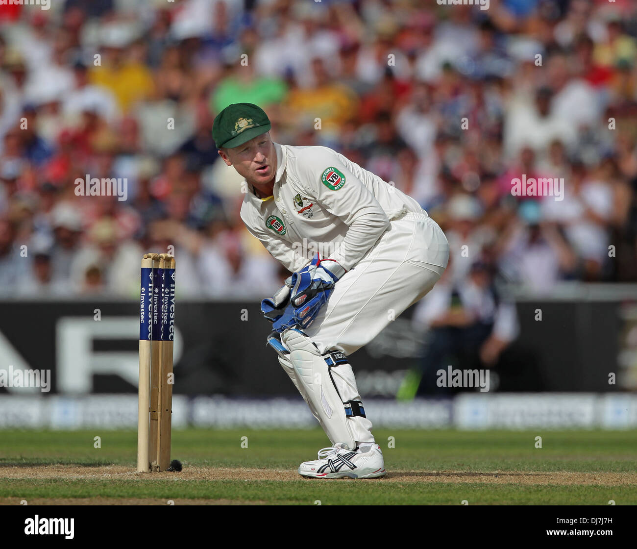 Australia wicket keeper Brad Haddin crouches behind the stumps as he watches the ball go behind him - Stock Image