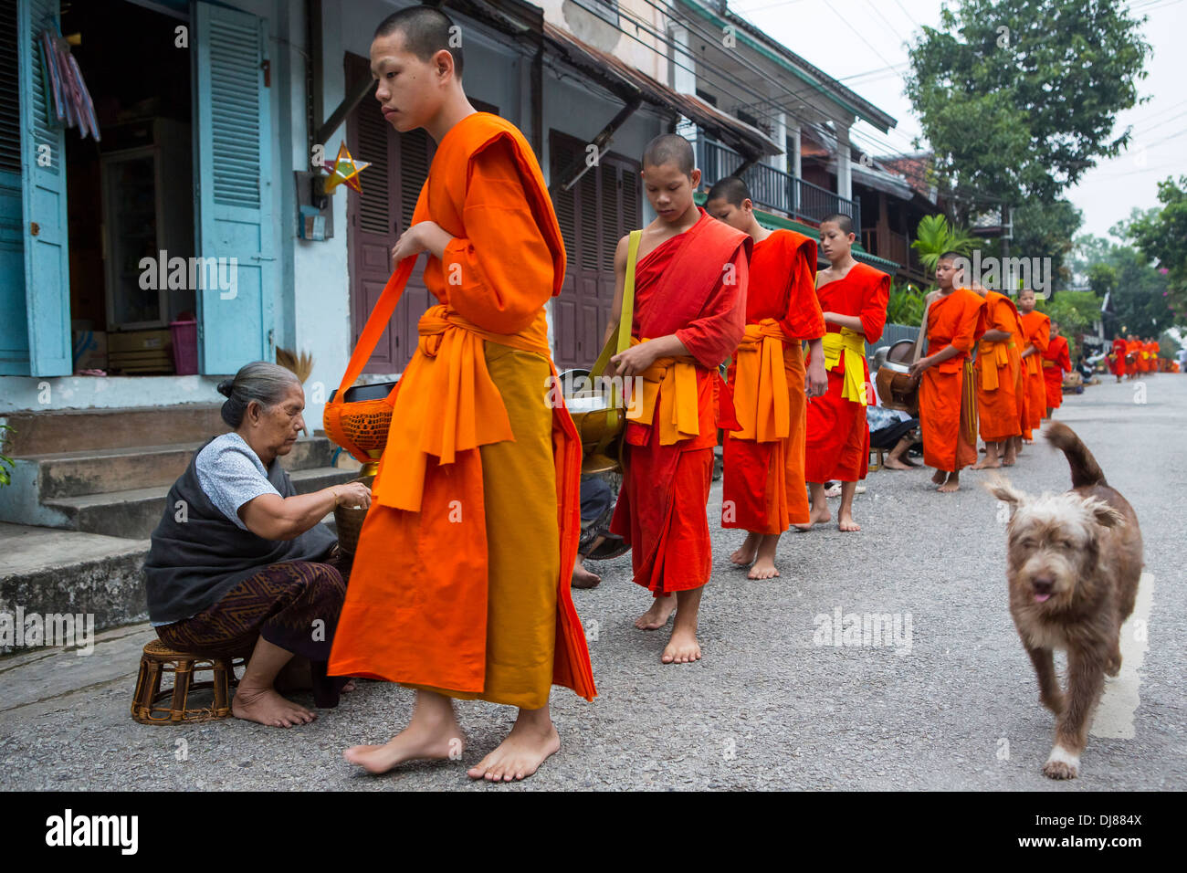 Alms giving ceremony in Luang Prabang, Laos Stock Photo