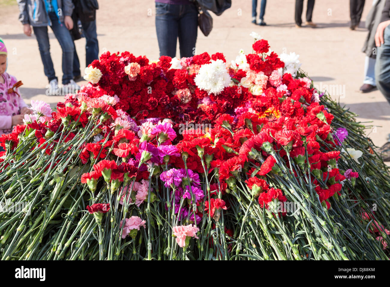 Red carnations around the eternal flame at the Champ de Mars in St. Petersburg. Russia. Victory Day, May 9. Close up - Stock Image