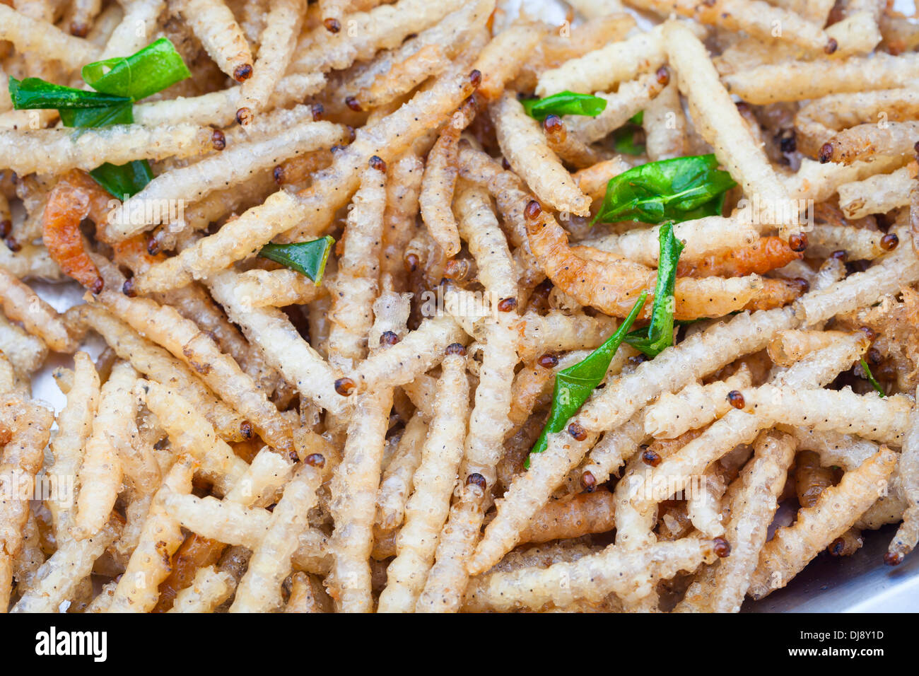 Deep fried bamboo worms garnished with scallion leaves, Thailand - Stock Image