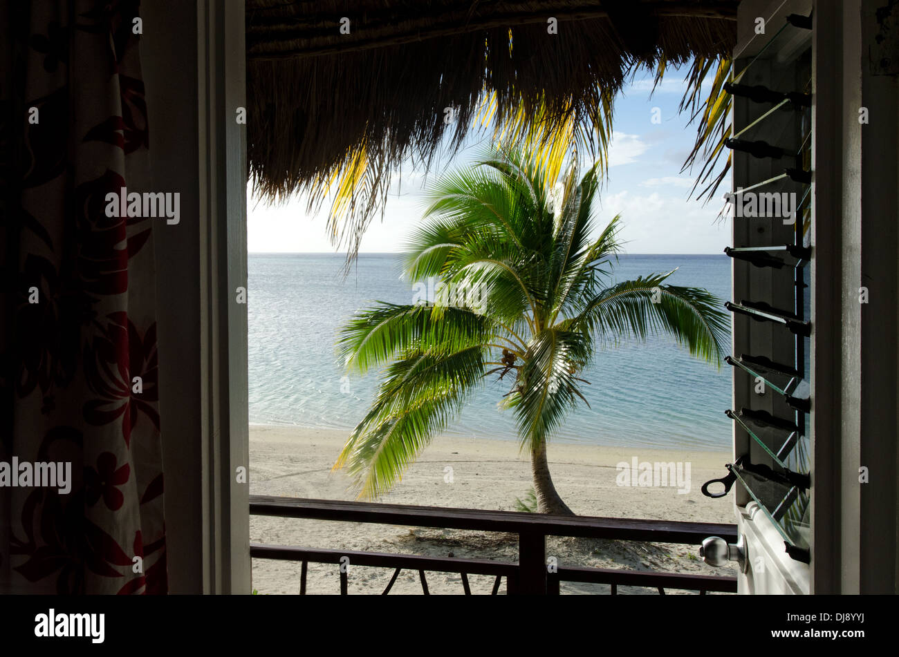 Landscape of coconut palm tree as view from beach bungalow in Aitutaki Lagoon Cook Islands - Stock Image