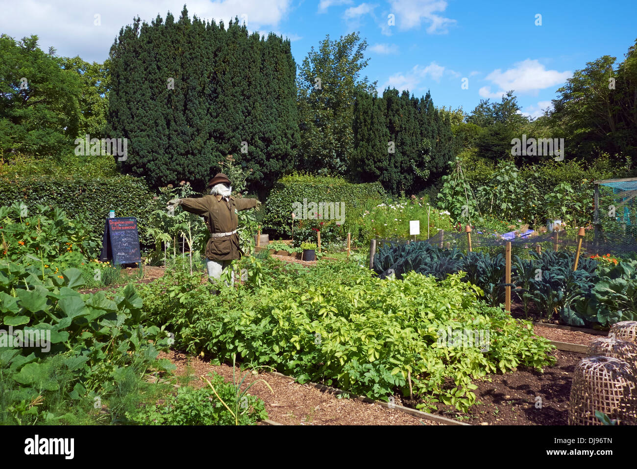 A scarecrow in the vegetable garden at Nunnington Hall, North Yorkshire. - Stock Image