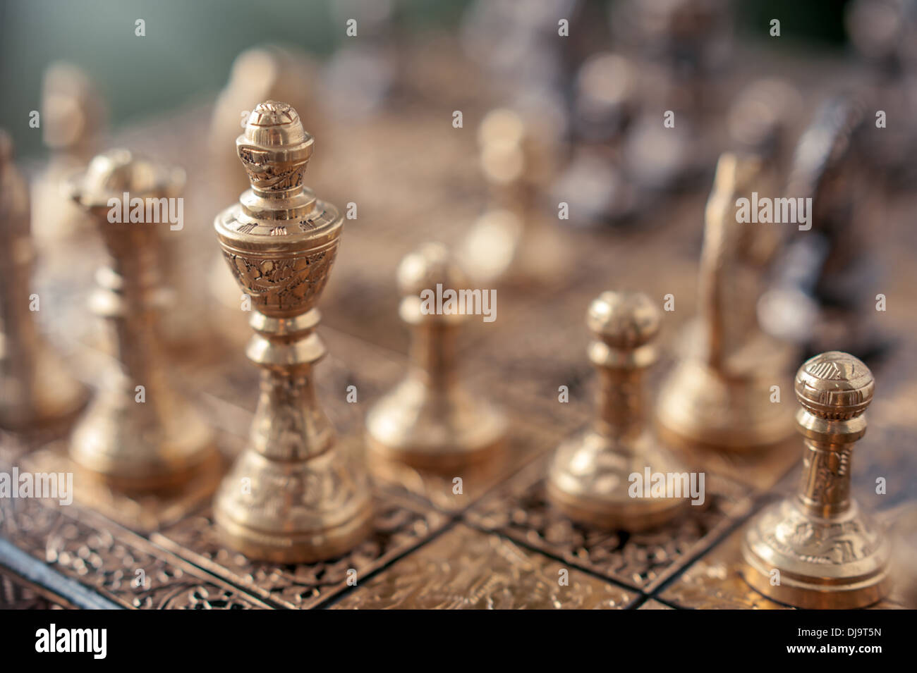 two horse on chessboard closeup - Stock Image