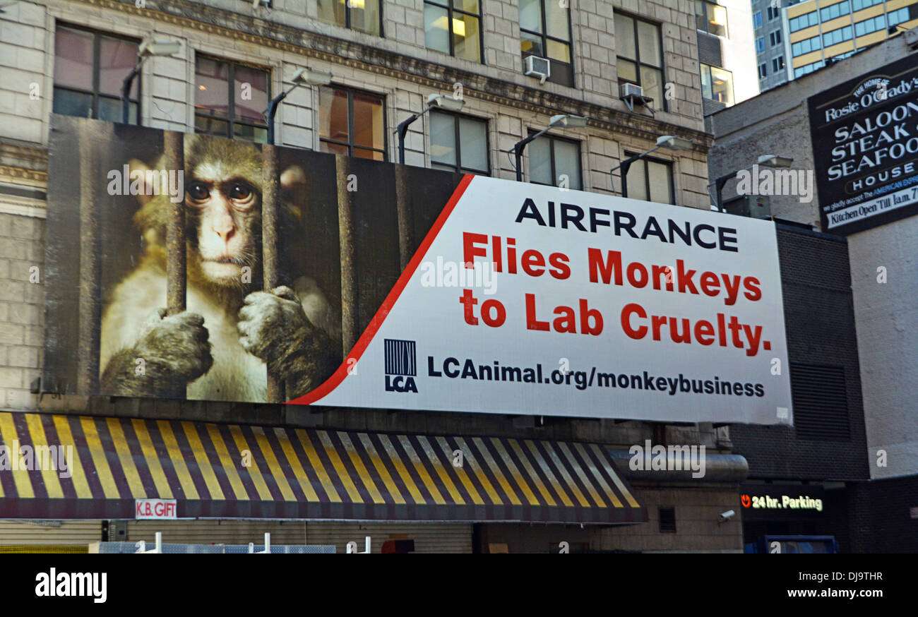 Billboard in Midtown Manhattan protesting Air France for their part in laboratory testing of Monkeys. By Last Chance for Animals - Stock Image