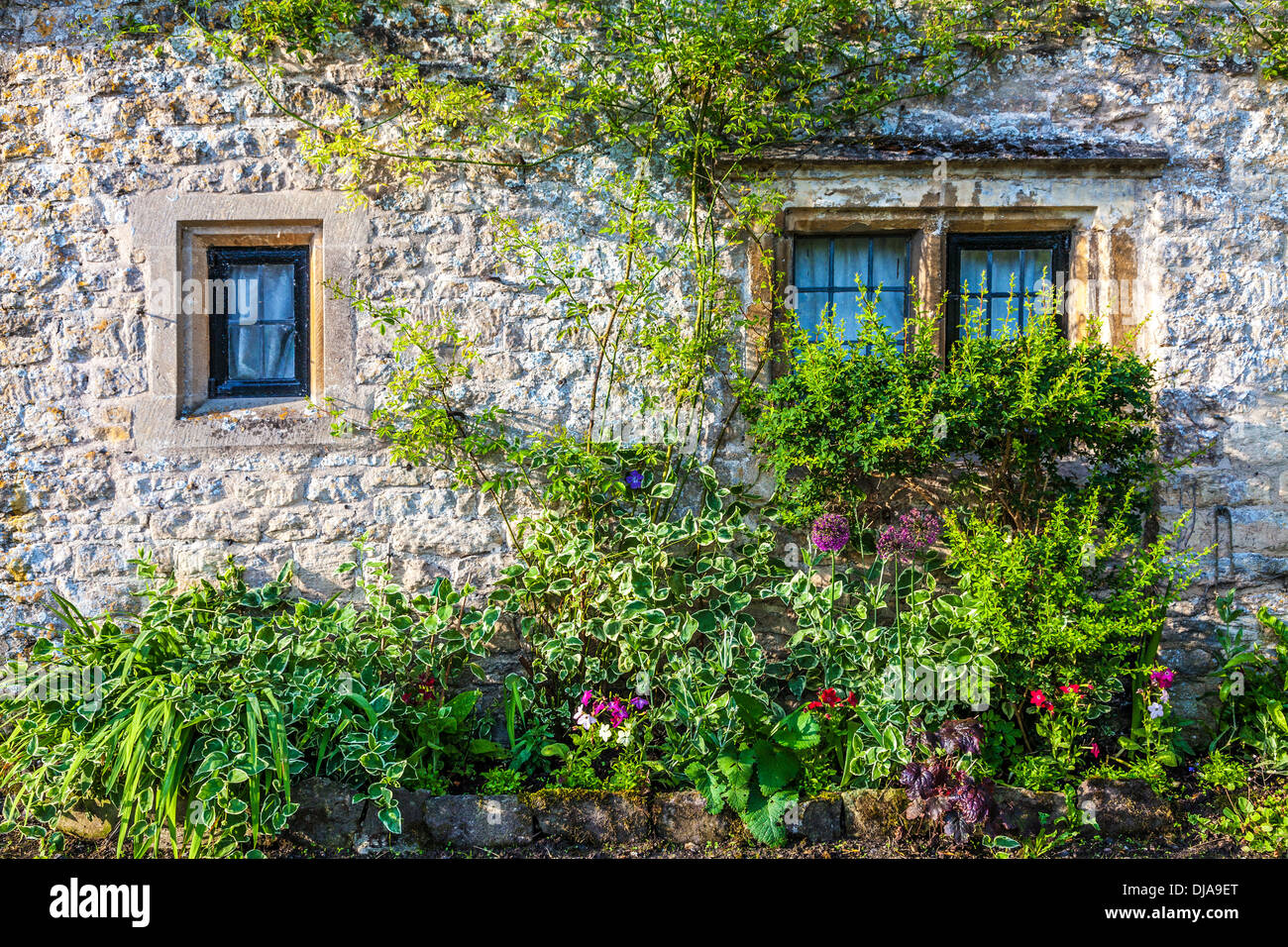 Leaded light windows and front garden in the famous Arlington Row of weavers' cottages in the Cotswold village of Bibury. - Stock Image