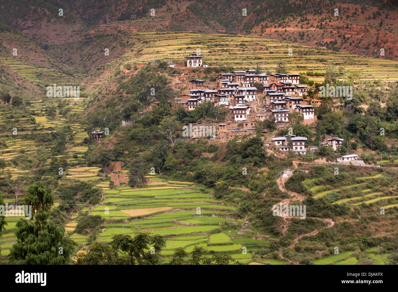 Bhutan, Wangdue Phodrang, small village of farmhouses amongst agricultural terraces - Stock Image
