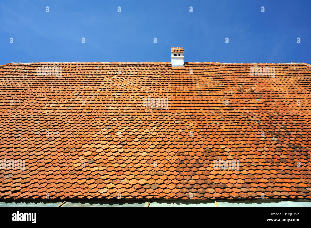 Roof of an old farmhouse with plain tiles, 1695, Franconian Open Air Museum, Bad Windsheim, Middle Franconia, Bavaria, Germany - Stock Image