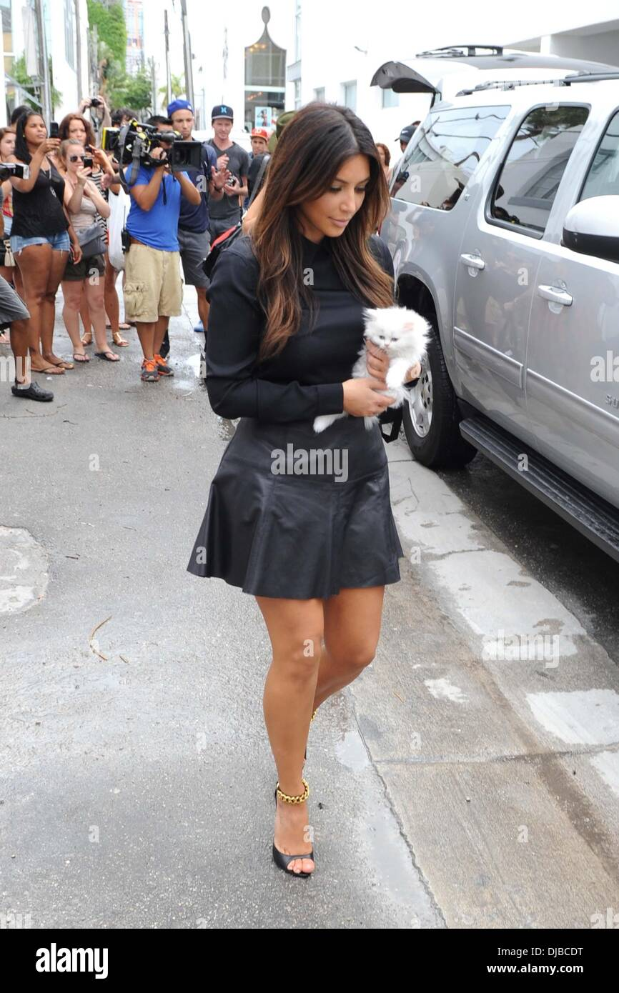 Kim Kardashian holds a white kitten The Kardashian sisters