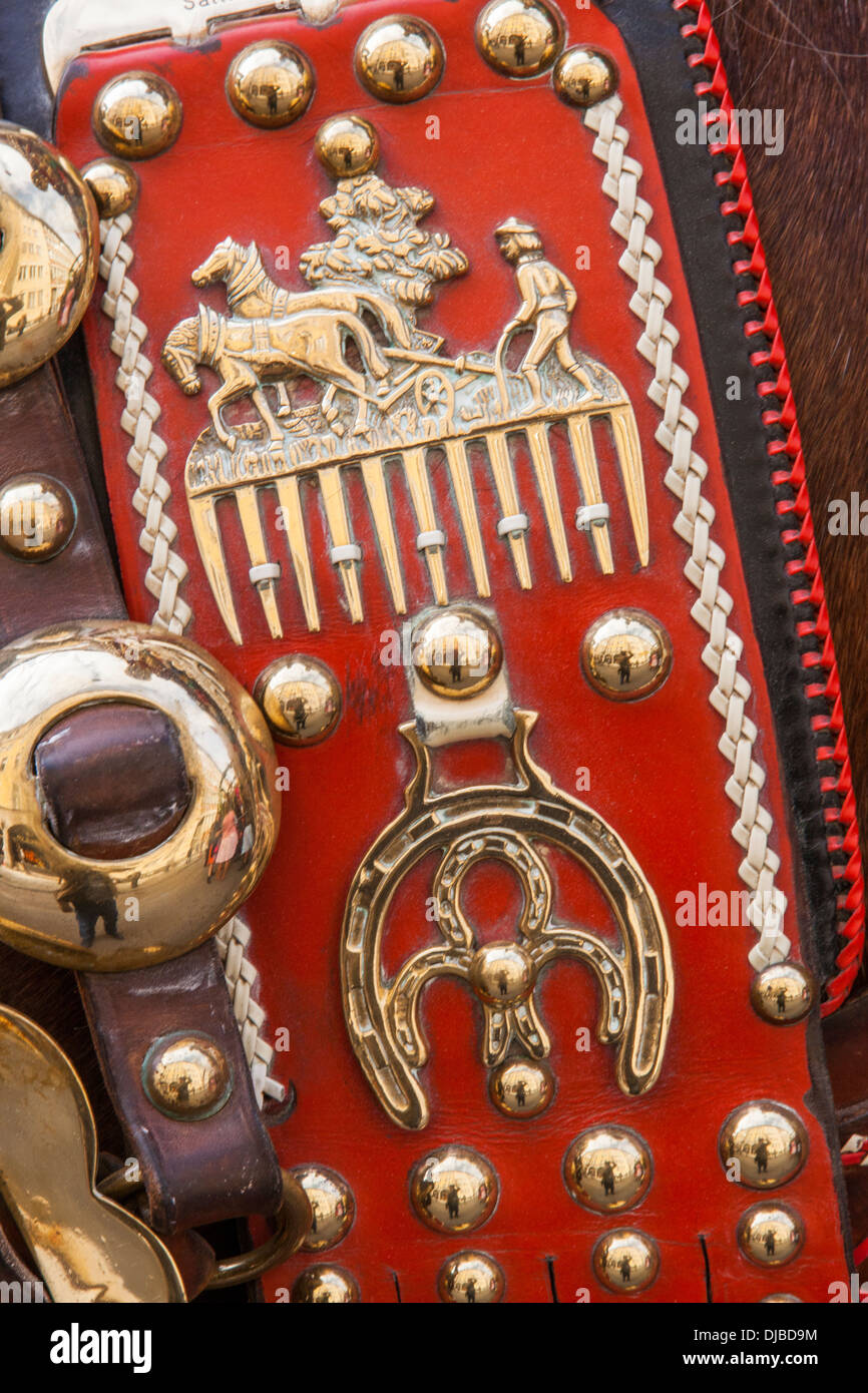 Germany, Bavaria, Munich, Oktoberfest, Horses Dressed in Festival Livery, Livery Detail - Stock Image