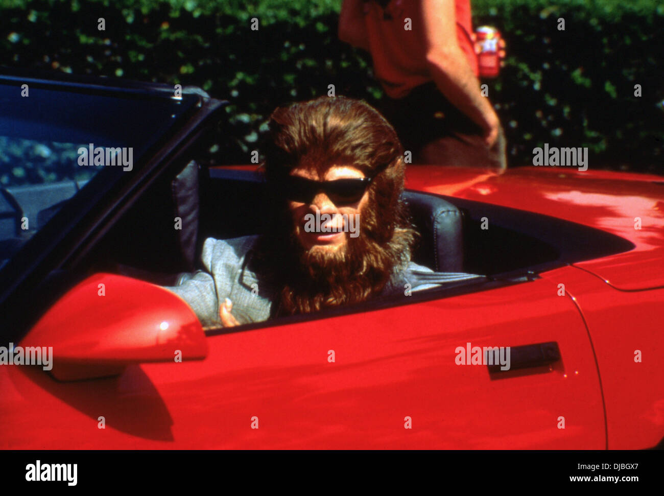 TEEN WOLF TOO (1987) TEEN WOLF 2 (ALT) JASON BATEMAN, CHRISTOPHER LEITCH (DIR) TWTO 002 MOVIESTORE COLLECTION LTD - Stock Image