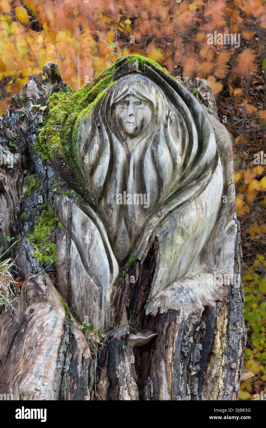 Carved tree stump at Tideswell Dale, Peak District, Derbyshire - Stock Image