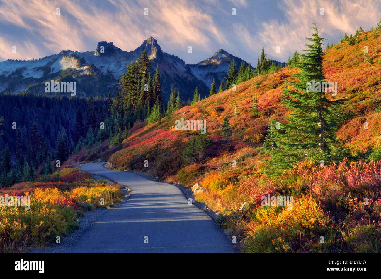 Fall Color And Sunrise With Path In Mt Rainier National