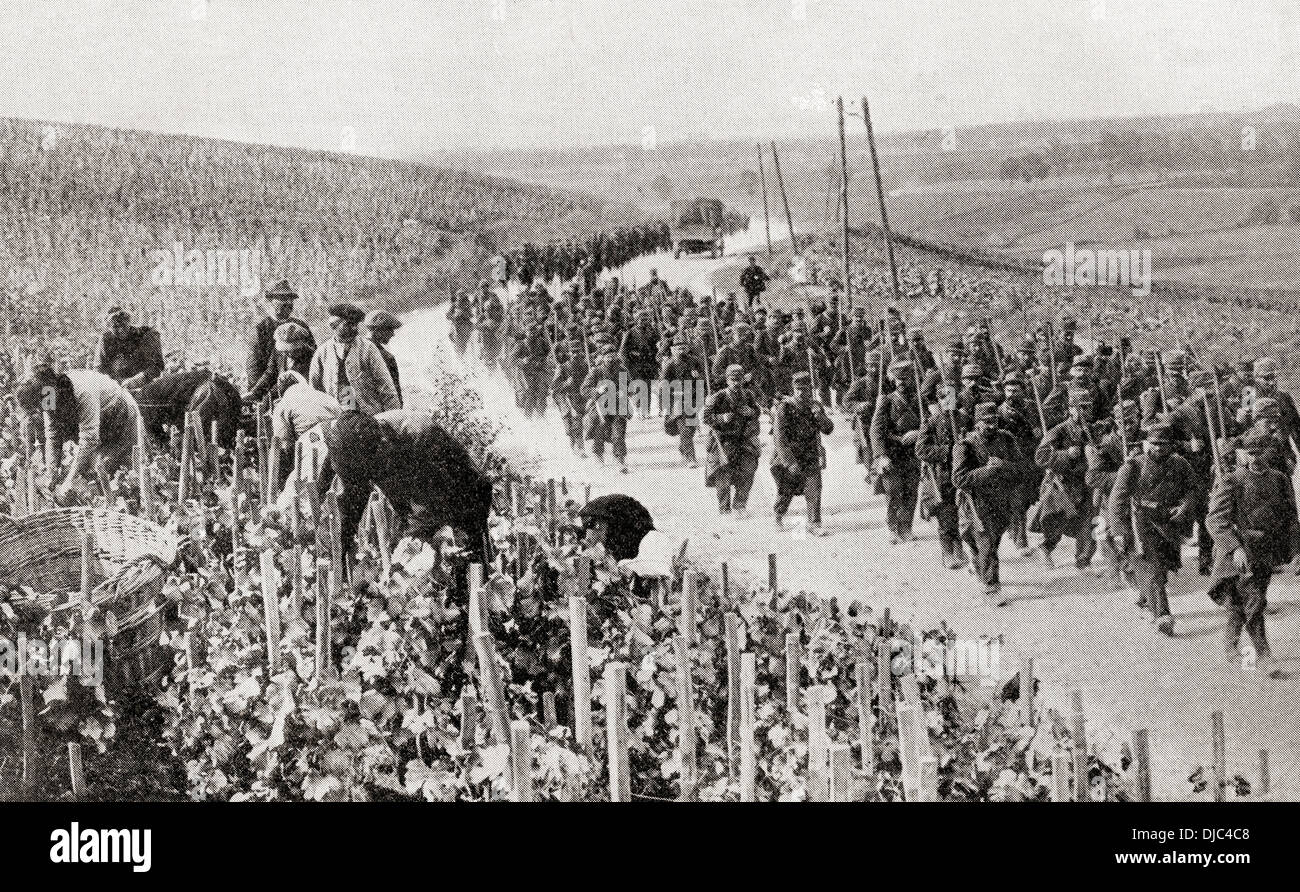 The trail of war amid the peaceful vineyards of Northern France during WWI. - Stock Image