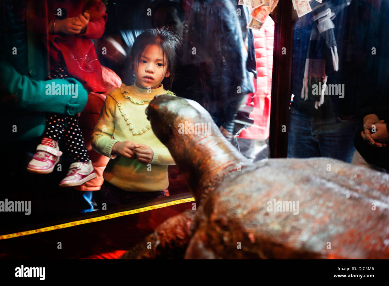 People admiring a sculpture of a giant turtle at the Ngoc Son Temple on Hoan Kiem Lake, Hanoi, Vietnam. - Stock Image
