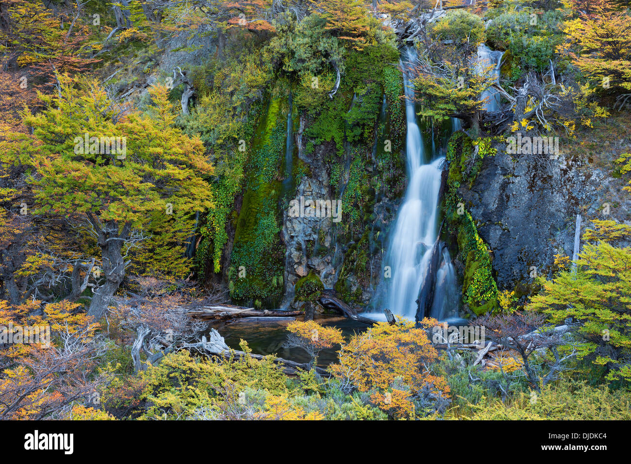 Scenic waterfall.Patagonia.Argentina - Stock Image