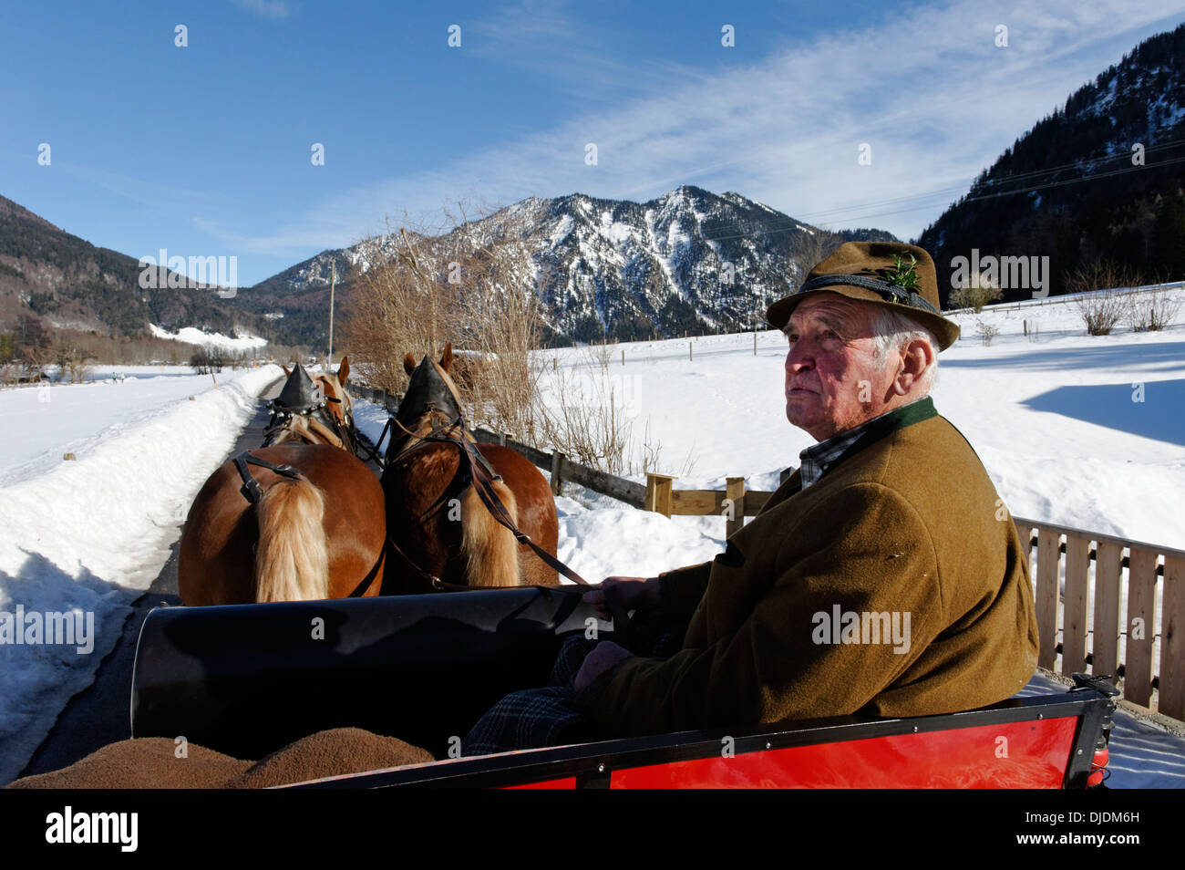 Coachman, sleigh ride from Rottach to the Weissachalm in Weissachtal Valley, Tegernseer Land Region, Upper Bavaria, Bavaria - Stock Image