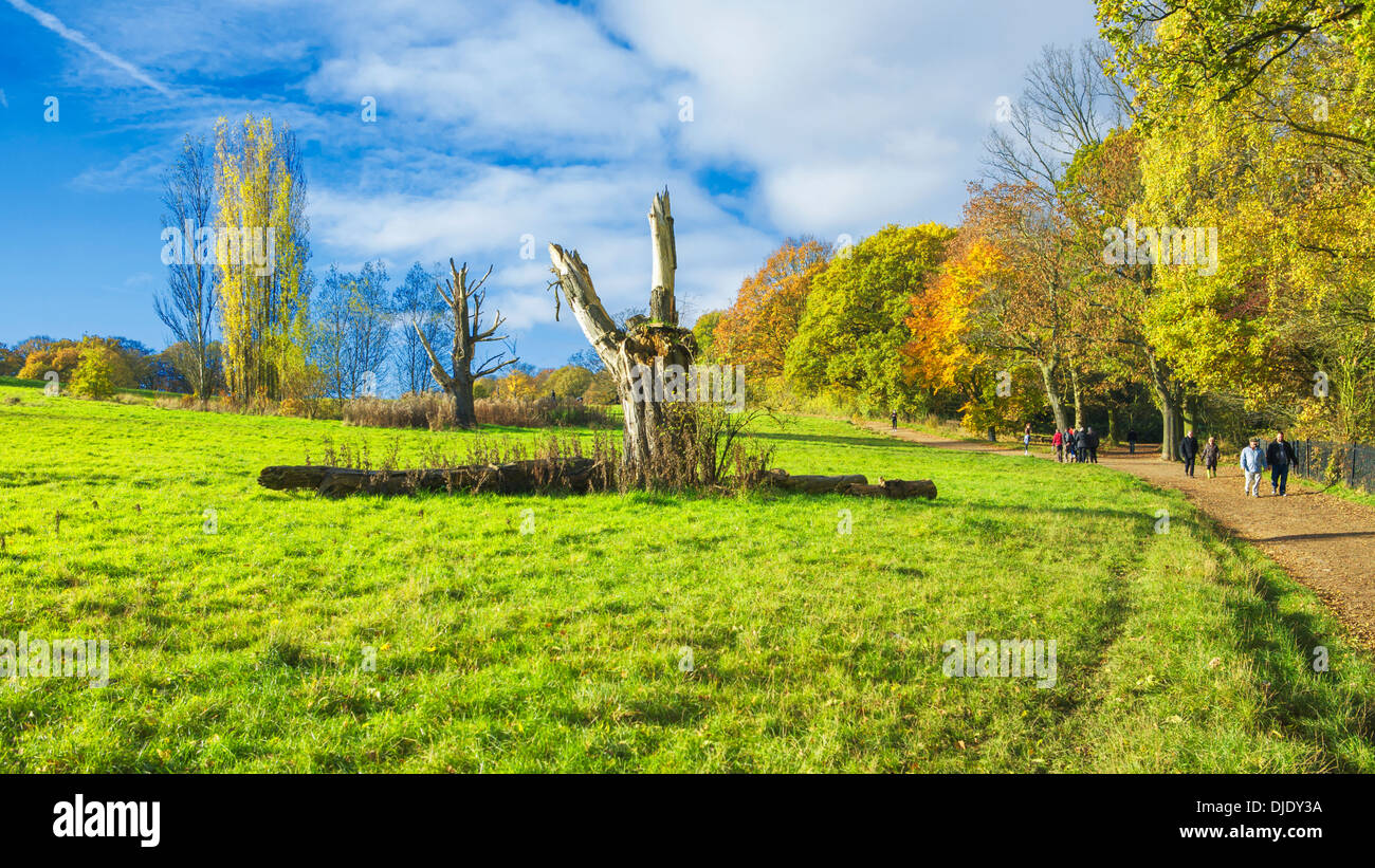 An autumn scene on Hampstead Heath: morning sunlight, autumn colours, trees and walkers. - Stock Image