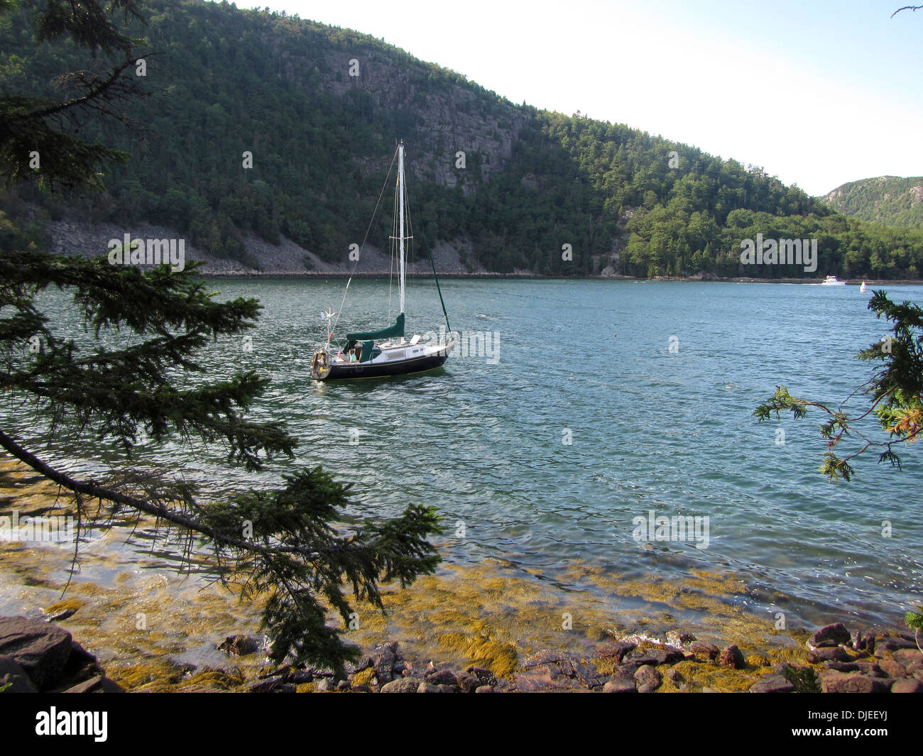 A black sailboat anchored at Valley Cove in the fjord of Somes Sound, Maine, USA. - Stock Image