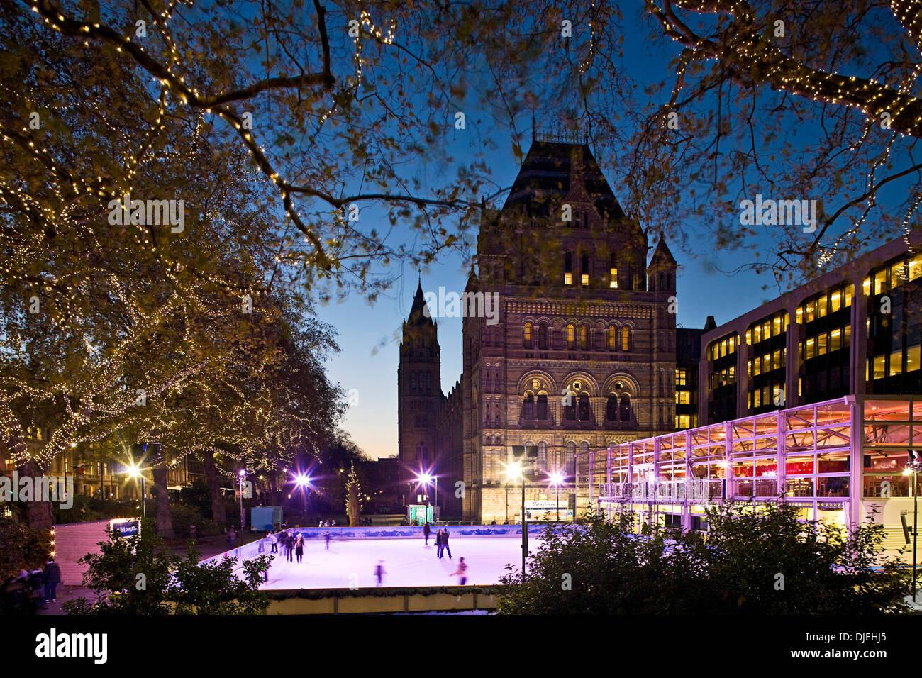 National History Museum, London, England, UK, Christmas, Shopping, Winter. Lagoon Images - Stock Image