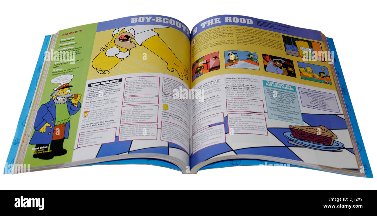 The simpsons Book - Stock Image