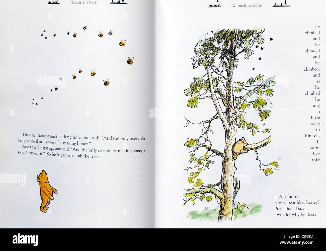 The gorgeous EH Shepard illustrated version of Winnie the Pooh by AA Milne - Stock Image