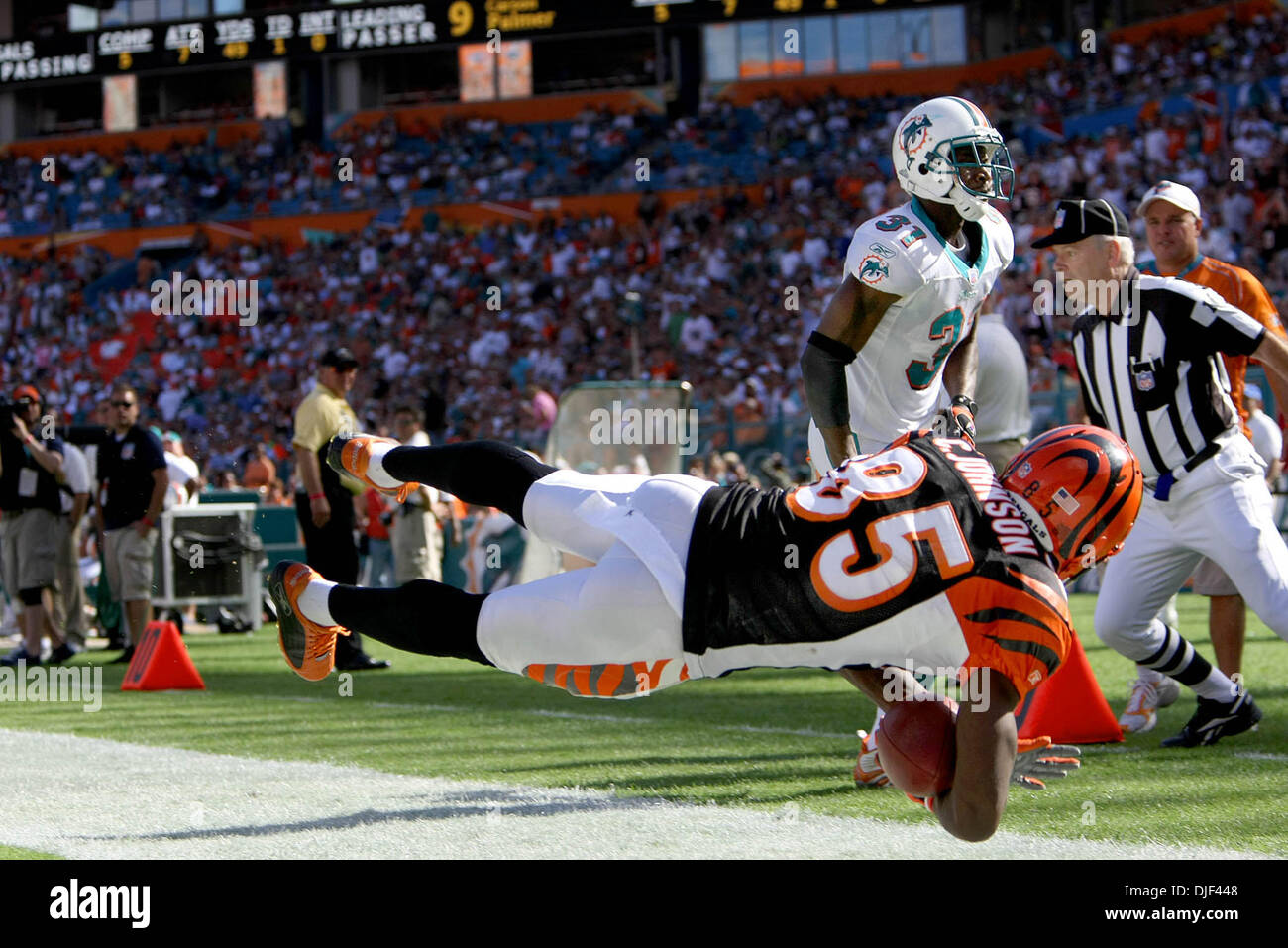 Dec 30, 2007 - Miami Gardens, Florida, USA - Bengals wide receiver CHAD JOHNSON dives in the end zone for a touchdown during second qt. action against the Dolphins during second half action Sunday at Dolphin stadium in Miami Gardens. (Credit Image: © Bill Ingram/Palm Beach Post/ZUMA Press) RESTRICTIONS: * USA Tabloids Rights OUT * - Stock Image