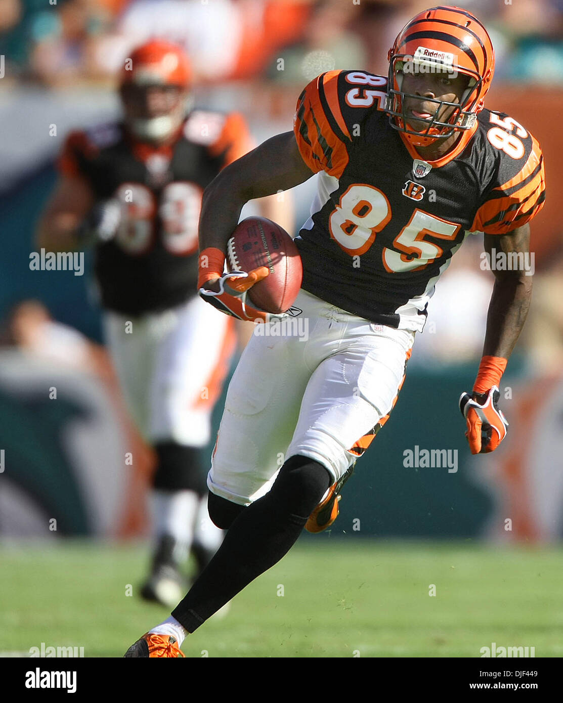 Dec 30, 2007 - Miami Gardens, Florida, USA - Bengals wide receiver CHAD JOHNSON runs for a touchdown during second qt. action against the Dolphins during second half action Sunday at Dolphin stadium in Miami Gardens. (Credit Image: © Bill Ingram/Palm Beach Post/ZUMA Press) RESTRICTIONS: * USA Tabloids Rights OUT * - Stock Image