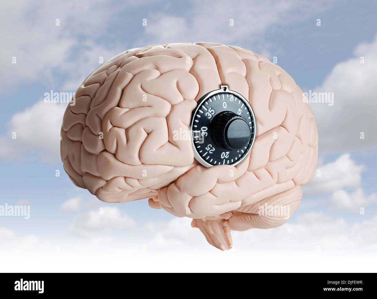 Human brain model with a dial lock - Stock Image