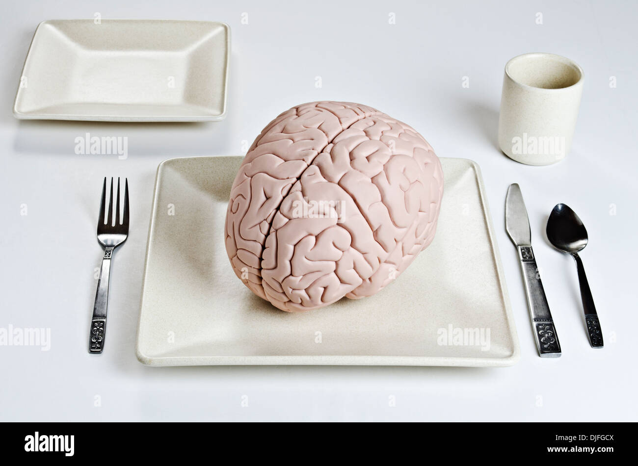 Human brain model on a dinner plate with silverware - Stock Image