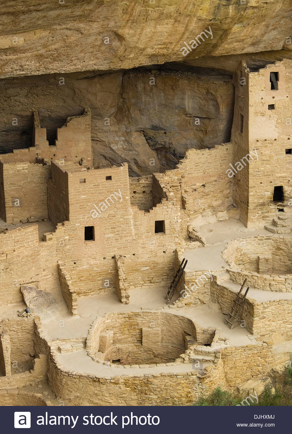 The ruins of Cliff Palace,Mesa Verde,Colorado - Stock Image