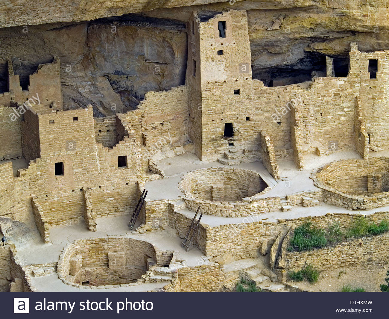 The ruins of the Cliff Palace,Mesa Verde,Colorado - Stock Image