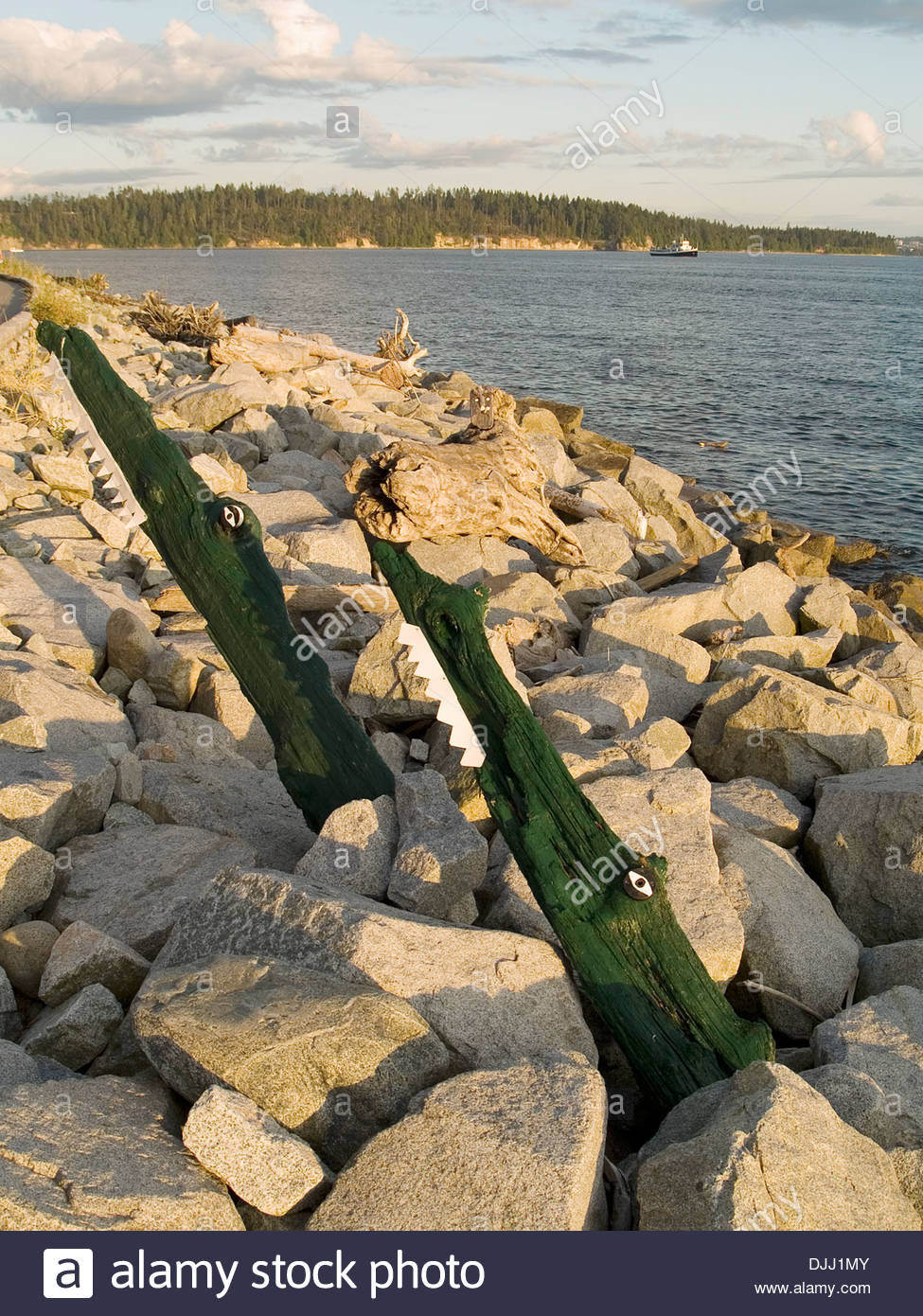 Two alligators from driftwood,Ambleside Promenade,Vancouver - Stock Image