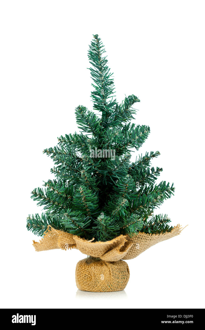 small undecorated christmas tree in burlap stand over white background stock image