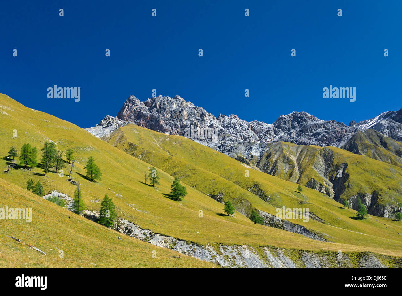 View over the mountain Piz Fier in Val Trupchun, Swiss National Park at Graubünden / Grisons in the Alps, Switzerland - Stock Image