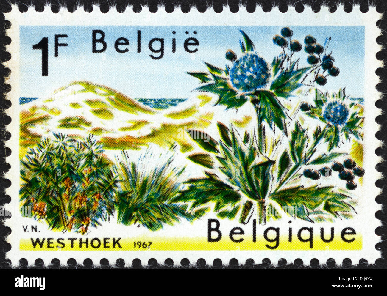 postage stamp Belgium 1F featuring Westhoek nature reserve issued 1967 - Stock Image