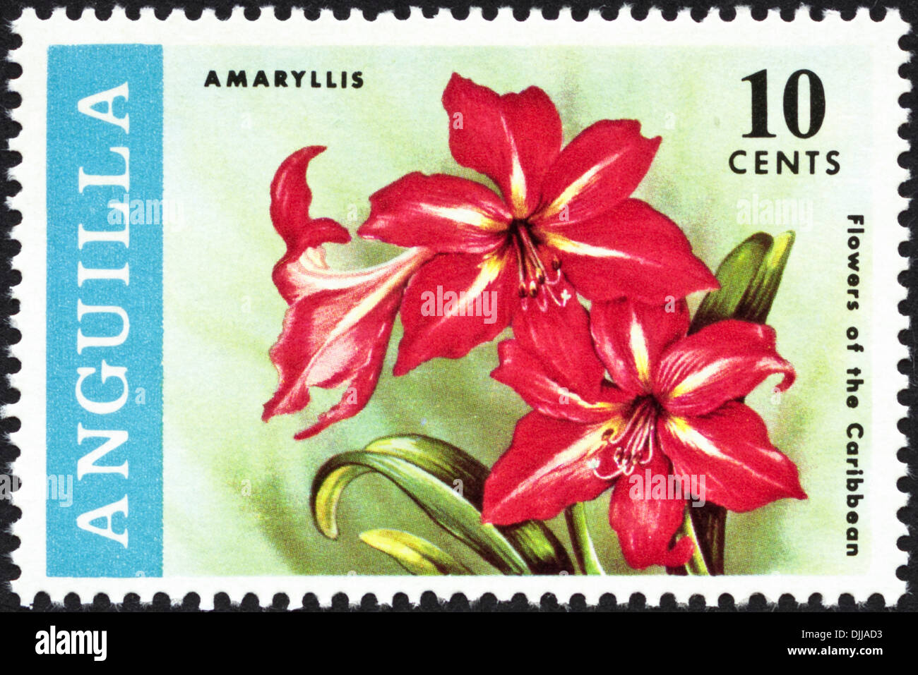 postage stamp Anguilla 10 cents featuring Flowers of the Caribbean issued 1969 - Stock Image