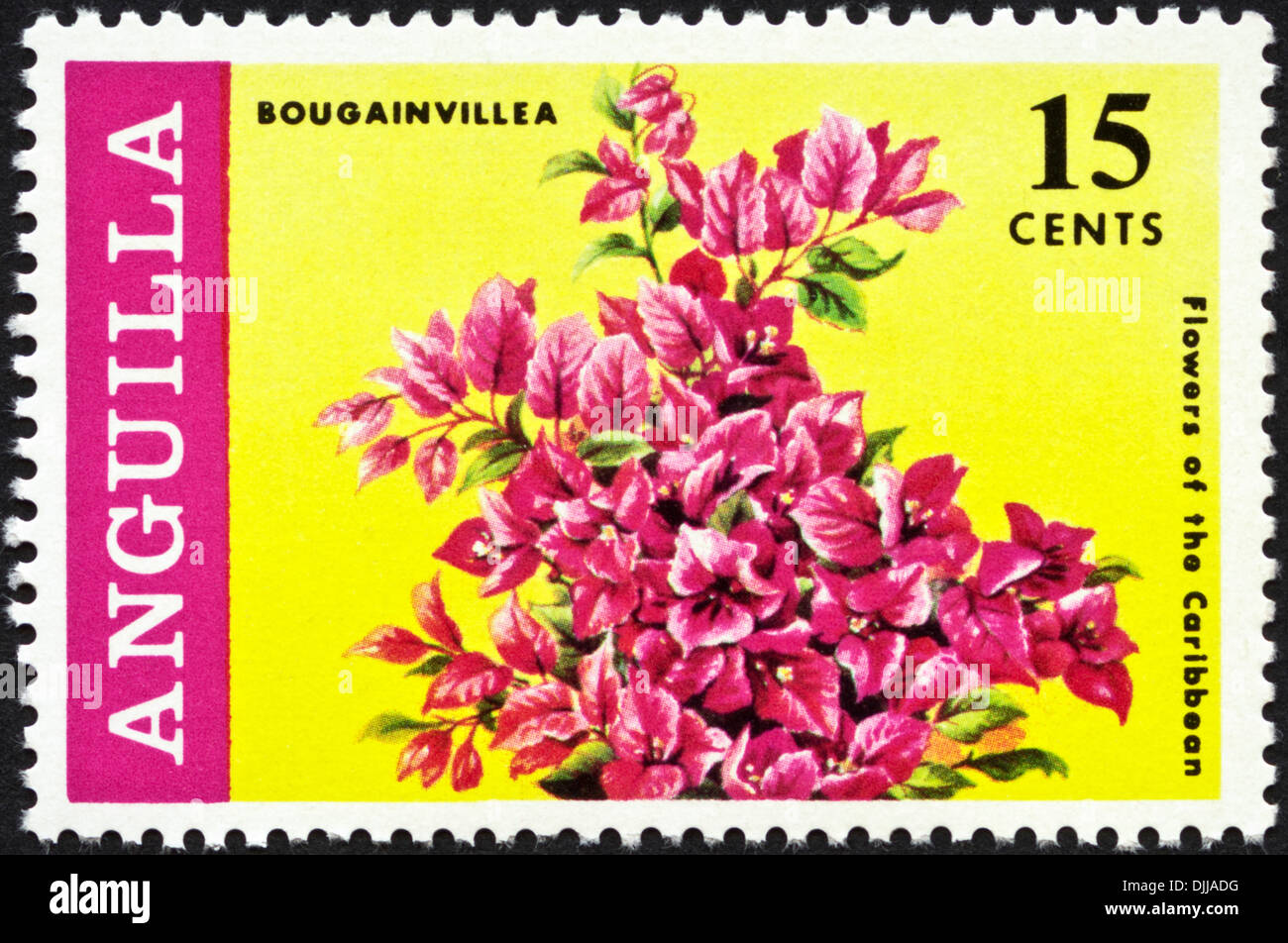 postage stamp Anguilla 15 cents featuring Flowers of the Caribbean issued 1969 - Stock Image