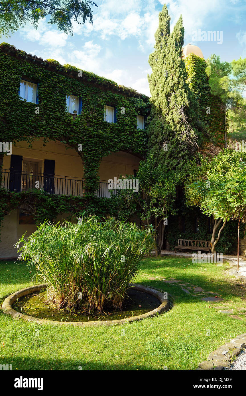 Backyard with old mansion covered by ivy in south of France, Collioure, Roussillon - Stock Image