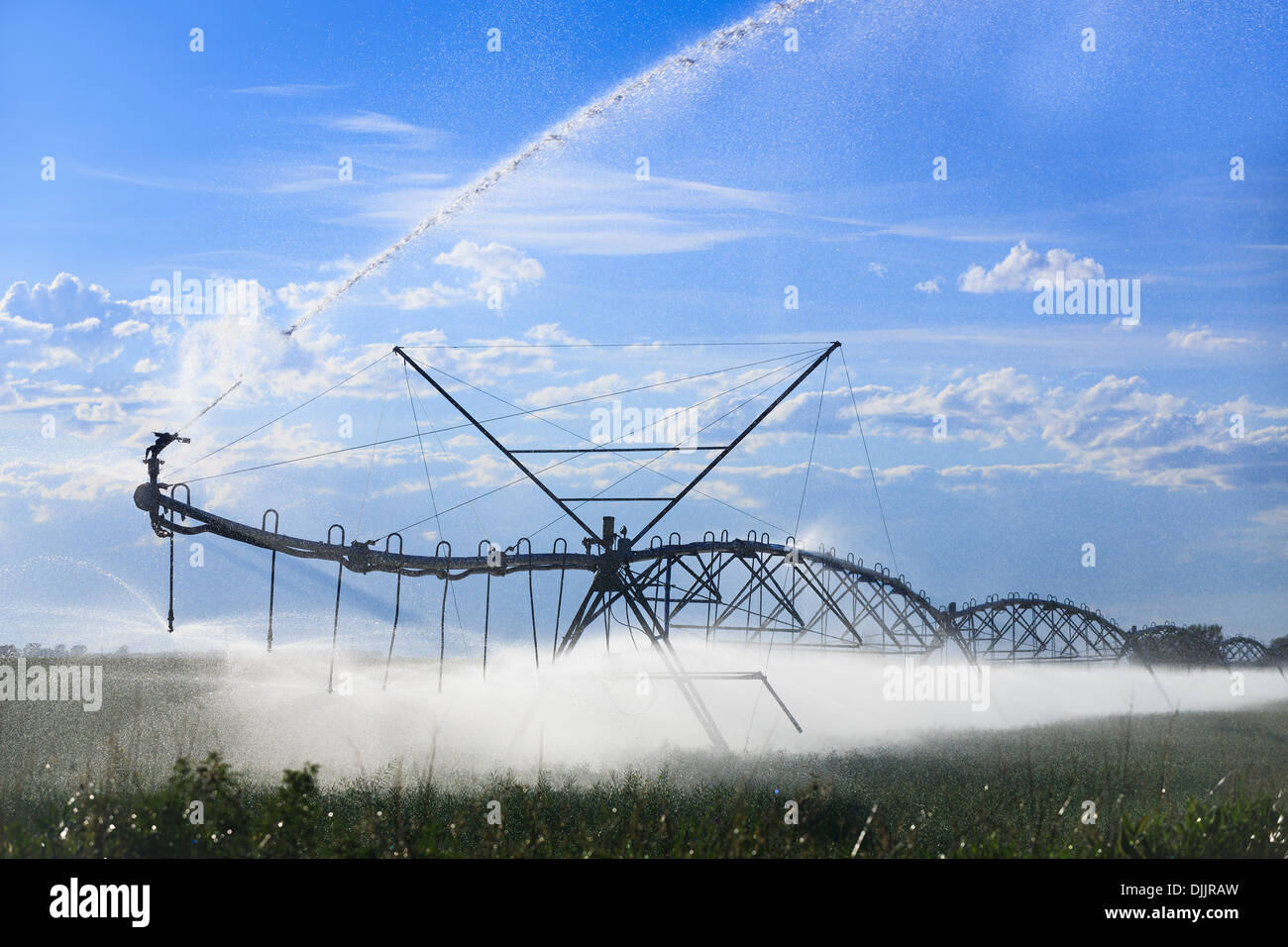 Center pivot water irrigation, watering farm fields, near Lethbridge, Alberta, Canada - Stock Image