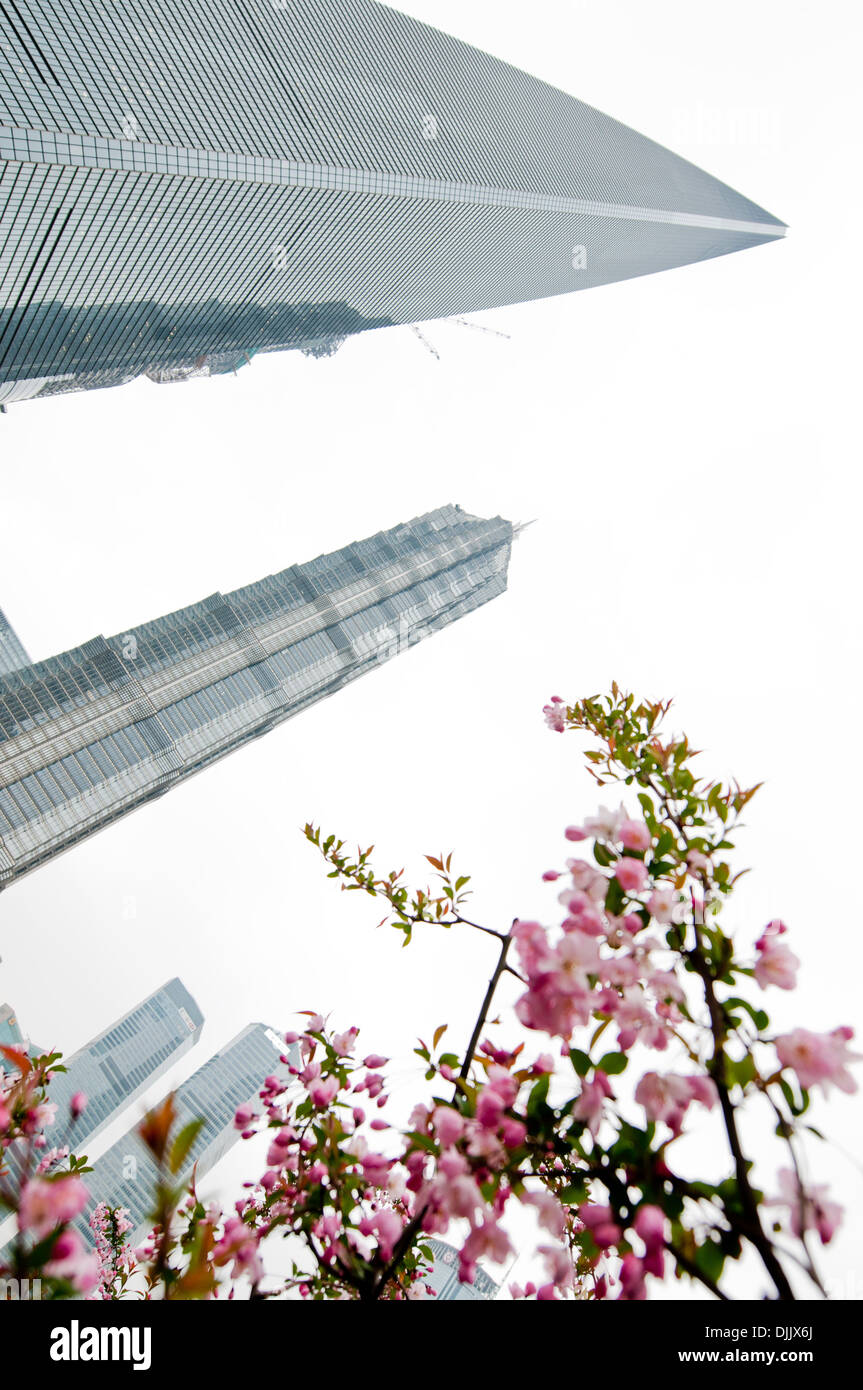 Shanghainese Skyscrapers Buildings Stock Photos ...