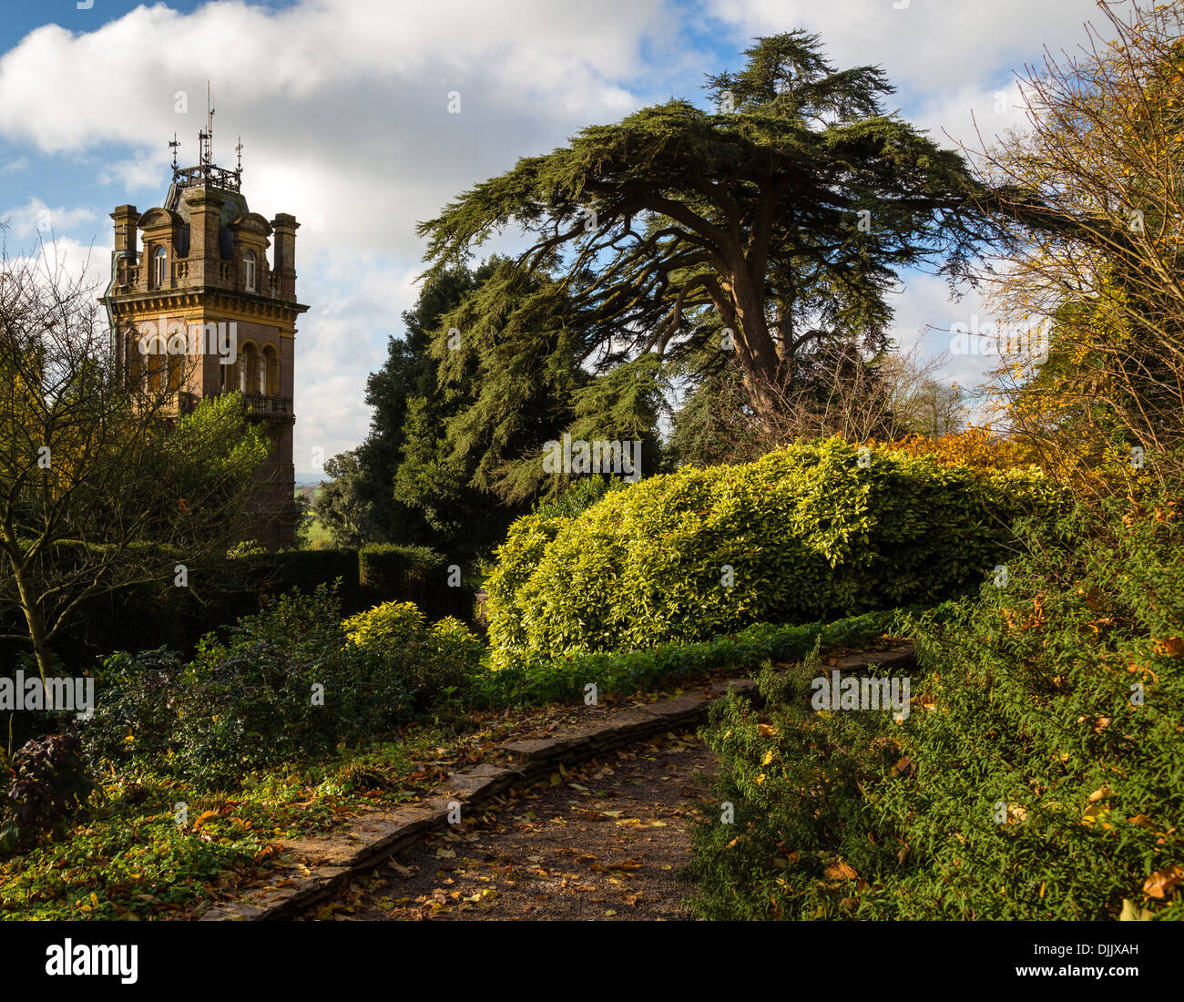 Victorian tower of Hestercombe House Somerset UK from a woodland path in the garden in autumn - Stock Image