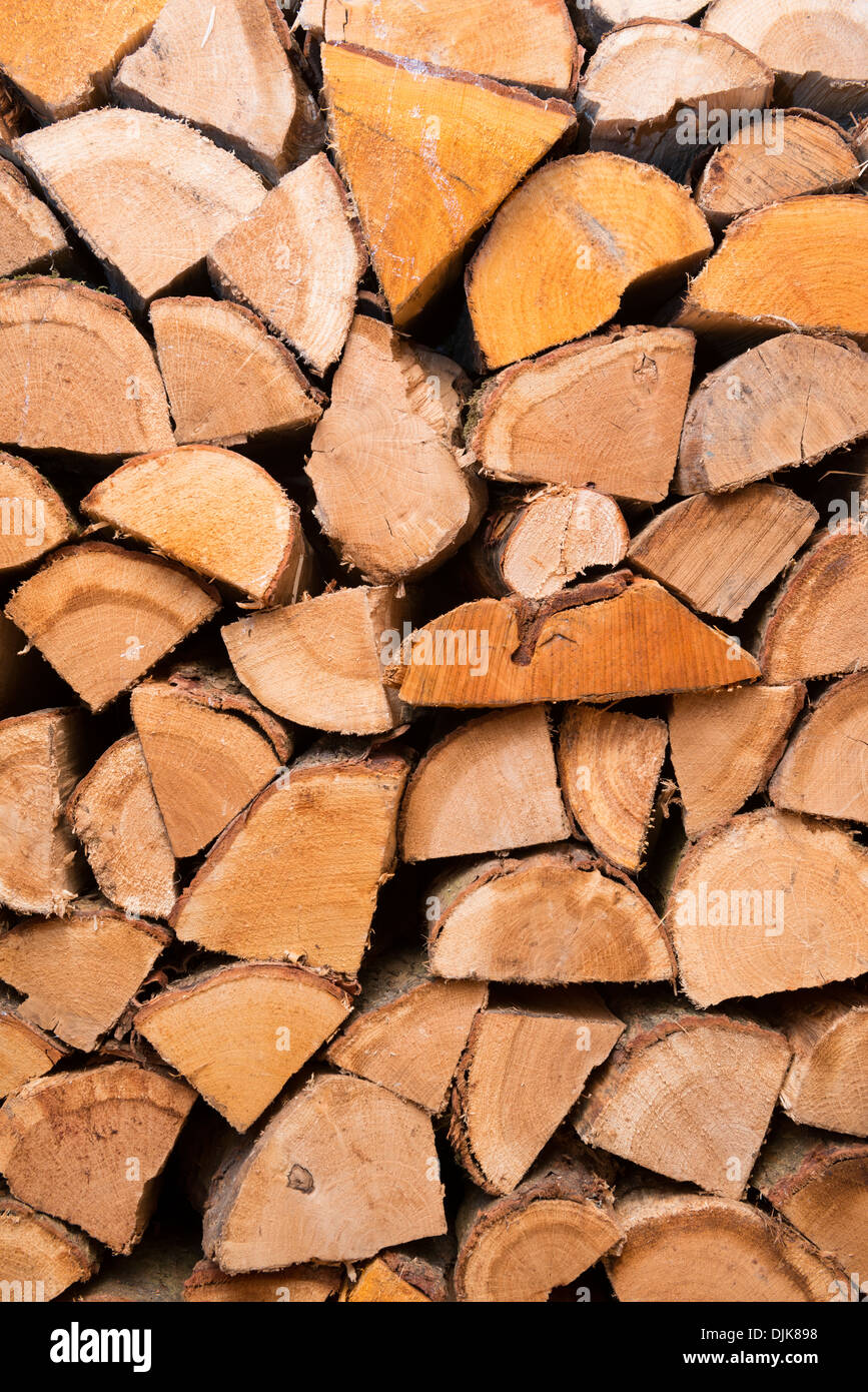 Logs in a wood store - Stock Image