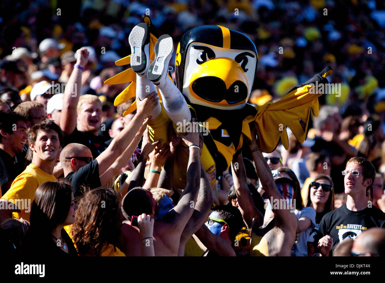 Sept. 11, 2010 - Iowa City, Iowa, United States of America - Herky the Hawkeye crowd surfs during Iowa's big 35-7 win over instate rival Iowa State on Sept. 11, 2010, at Kinnick Stadium in Iowa, City, Ia (Credit Image: © Louis Brems/Southcreek Global/ZUMApress.com) - Stock Image
