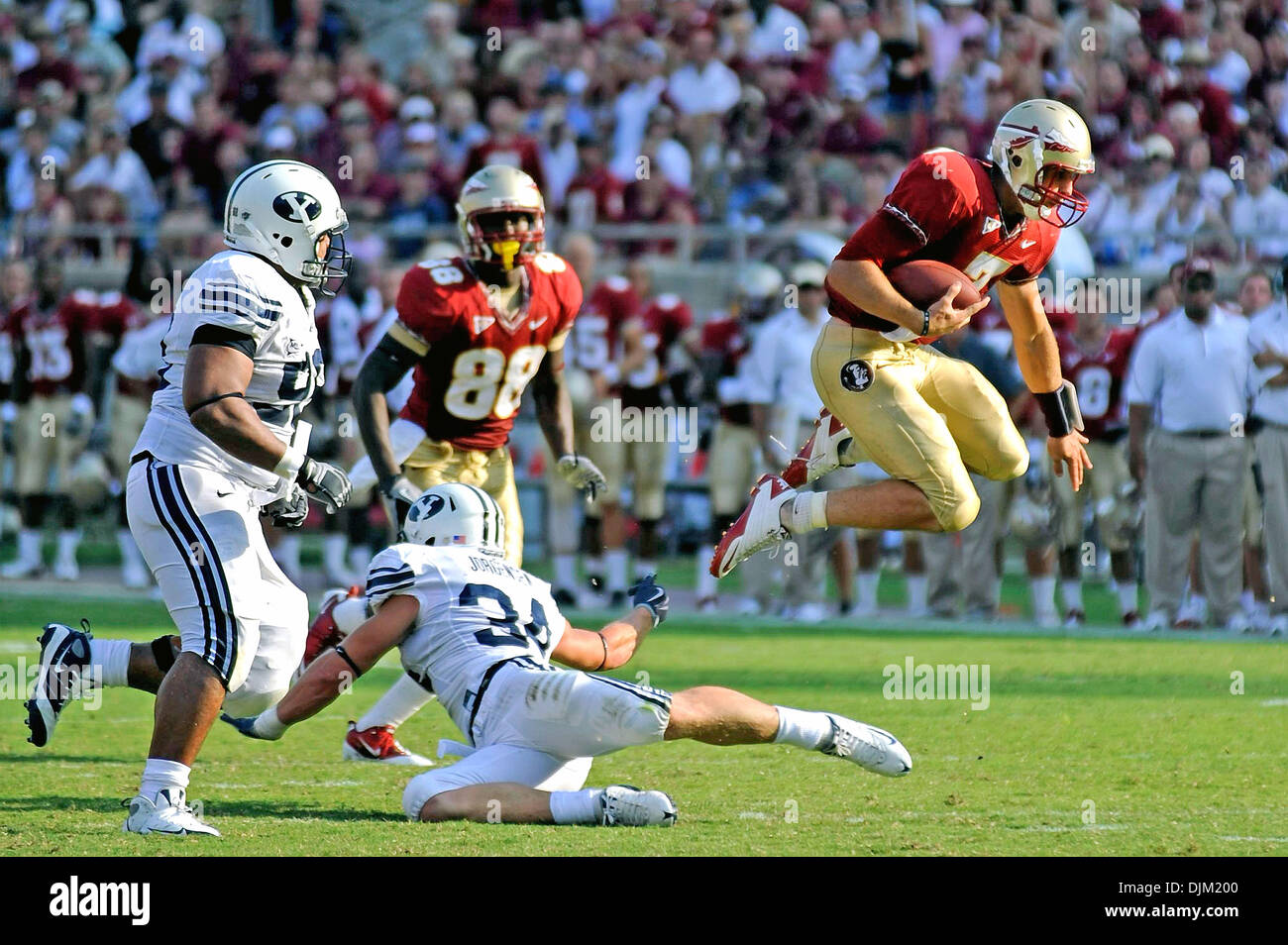 Sept. 18, 2010 - Tallahassee, Florida, United States of America - September 18, 2010: FSU QB Christian Ponder (7) leaps over a would be tackle by BYU LB Austen Jorgensen (34) as he scrambles for an FSU first down. FSU defeated BYU 34-10 at Doak Campbell Stadium in Tallahassee, Florida. (Credit Image: © Mike Olivella/ZUMApress.com) - Stock Image