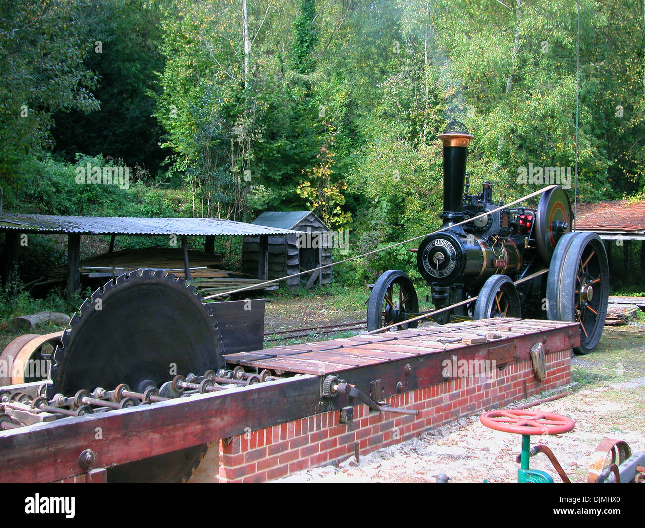 A saw bench for cutting up trees powered by a steam traction engine. - Stock Image